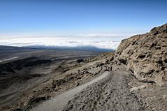 Descent of the Kilimanjaro towards the Barafu camp - Kilimanjaro National Park - Tanzania (PascalBo) Tags: nikon d300 tanzania tanzanie africa afrique eastafrica afriquedelest kilimanjaro kilimandjaro kilimanjaronationalpark parcnationaldukilimandjaro outdoor outdoors volcanic landscape paysage rock stone lemosho hike hiking trek trekking pascalboegli