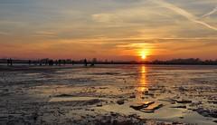 Skating with the sunset 22-1-17..........On Explore (wilma HW61) Tags: zonsondergang sunset coucherdusoleil tramonto sonnenuntergang uiterwaarden flussauen pianurealluvionali plainesinondables floodplains ijssel ijsseldelta rivier river rivière fiume ijs ice gelato glacée eis bevroren gefroren gelé gel frozen frosty zon sun zonlicht sunlight avondlicht avondzon avond evening sera soirée abend hattem gelderland zwolle overijssel engelsewerk natuur nature natur naturaleza nikond90 nederland niederlande netherlands holland holanda paísesbajos paesibassi paysbas outdoor wilmahw61 wilmawesterhoud winter vinter hiver inverno landscape landschap view scenery senario sky