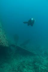 IMG_7278 (Stig Sarre) Tags: thistlegorm red sea redsea egypt scuba diving scubadiving dykking wreck vrak