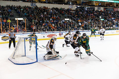 "Missouri Mavericks vs. Quad City Mallards, January 21, 2017, Silverstein Eye Centers Arena, Independence, Missouri.  Photo: John Howe / Howe Creative Photography • <a style=""font-size:0.8em;"" href=""http://www.flickr.com/photos/134016632@N02/32487053556/"" target=""_blank"">View on Flickr</a>"