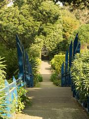 Bridge, Tresco Abbey Garden (seaslater) Tags: abbeygarden scilly tresco bridge