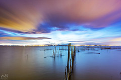 Albufera Valencia_1. Febrero 2017 (MSB.Photography) Tags: albufera valencia paisaje atardecer sunset landscape nube clouds spain nature sky cielo reflections reflejos españa lake lagoon vlc sony nex7 samyang 12mm calm calma agua water pesca fishing aire libre ndfilter nd2000 haida larga exposición long exposure