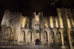 0491 - Europatour 2014 - Frankreich - Avignon (uwebrodrecht) Tags: france castle frankreich europa schloss avignon palast uwe papst brrodrecht