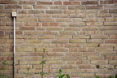 161_10.06.2015_Linien (myriam.kemper) Tags: lines 365 photooftheday minimalsim 2015 linien minimalismus 365days onepicaday 365tageprojekt kemper2015