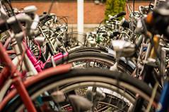 Tires (Matt H. Imaging) Tags: minolta sony depthoffield bicycles beercan groningen slt a55 sonyalpha minolta70210f4 minoltaaf70210mmf4 slta55v ©matthimaging