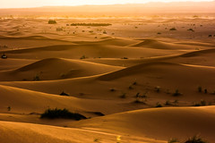 Sunrise over Sahara (marcusfornell) Tags: travel sky sahara beauty sand skies desert dunes adventure safari morocco journey afrika marokko wste merzouga saharadesert afria