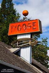 Moose Lodge (Eric Arnold Photography) Tags: old orange classic sign oregon highway or moose lodge sings oakridge patina 58 mooselodge hwy58 highway58 signless