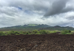 Haleakala, MauiIMG_0229 (grebberg) Tags: haleakala maui hawaii june 2015 usa