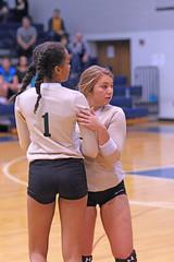 IMG_8038-01 (SJH Foto) Tags: girls volleyball high school york delone catholic team teen teenager substitution sub rotation