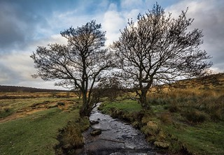 Burbage Brook...