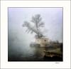 Recuerdos de invierno / Winter memories (tmuriel67) Tags: atmosphere niebla mist fog