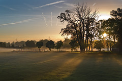 Play of light (jan.arnds) Tags: shadows lights landscape fog mist shine shining trees field sky morning mood