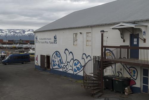 Húsavík Whale Museum, 15.07.2016.
