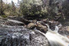 Cradle Mountain, Tasmania. (Steven Penton) Tags: tasmania australia cradle mountain national park