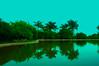 lago pimsa (foto lufo) Tags: cielo agua azul espejo palmera lago laguna kodak verde arbol arbustos tranquilidad paz quietud reciente mejor reflejo