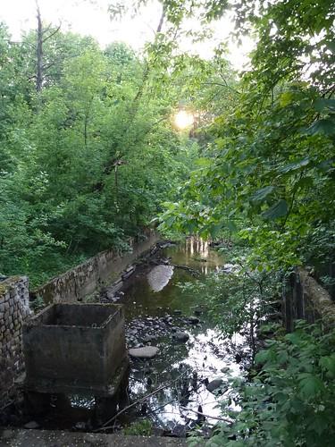 Pozostałości po młynie na Świdrze we wsi Tarachowizna
