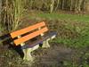 Rabobankje (streamer020nl) Tags: flevoland holland nederland nature netherlands niederlande polder paysbas bomen trees bäume arbres 2017 140117 bank bankje bench rabobank