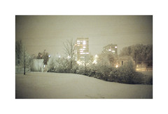 * (Daniel Espinoza) Tags: agfa400 nikonfe film winter analogphotography analogue filmphotography analogica pellicola fineart onlyfilm danielespinoza zurich schweiz suisse switzerland nocturnal night snow