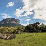 "Upuigma Tepui <a style=""margin-left:10px; font-size:0.8em;"" href=""http://www.flickr.com/photos/148015128@N06/32539130062/"" target=""_blank"">@flickr</a>"