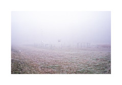 * (Daniel Espinoza) Tags: agfa400 contaxtvsii film fog winter analogphotography analogue analogica pellicola filmphotography onlyfilm 35mmfilm fineart suisse suiza schweiz danielespinoza landscape landschaft minimalist minimal