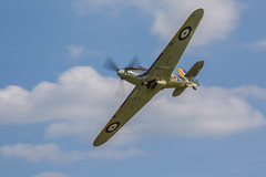 "HAWKER SEA HURRICANE • <a style=""font-size:0.8em;"" href=""http://www.flickr.com/photos/53908815@N02/18672744505/"" target=""_blank"">View on Flickr</a>"