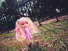 #STORM ALERT ⛅️⚡️⚡️ #love #sprightbeauty #pink #schoolgirl #blythe #doll #スプライトビューティー #ブライス #人形
