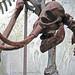 Mammuthus falconeri (dwarf mammoth) (Upper Pleistocene, ~15 ka; Sicily, Mediterranean Sea) 7