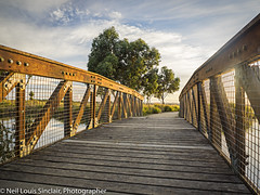 "LAKE WENDOUREE 2-2 Bridge • <a style=""font-size:0.8em;"" href=""http://www.flickr.com/photos/141572193@N06/32526082102/"" target=""_blank"">View on Flickr</a>"