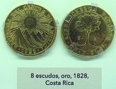 1828 Monedas Años 1800-1849  Museo Numismática Banco Central San José de Costa Rica 39 (Rafael Gomez - http://micamara.es) Tags: monedas años 18001849 museo numismática banco central san josé de costa rica