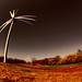 Summerside Wind Farm