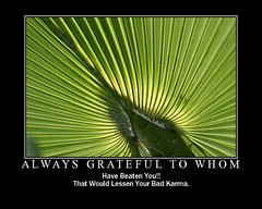 Always Grateful To Whom -  2 (CharlieBrown8989) Tags: culture wisdom flickrtoys fd charliebrown8989swisdom