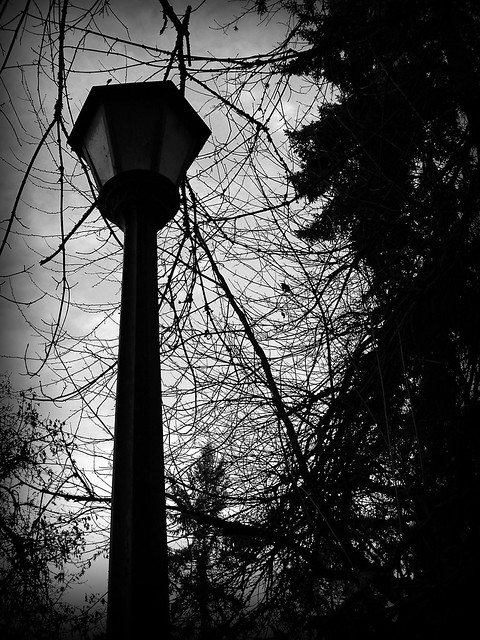 The Black and White Lamp post