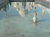Taj Mahal Reflection (Lazy B) Tags: india tomb tajmahal agra 2006 mausoleum february fz5 indianarchive btlt