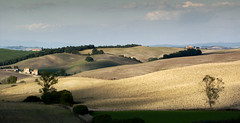 Near Buonconvento (Giuseppe Toscano) Tags: italy landscape tuscany toscana toskana