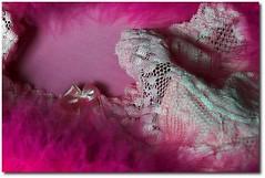 ... (.Tatiana.) Tags: pink topv111 still topv555 topv333 lingerie viajando corderosa cano rendas fotoclube rosachoque siteparavendadefotos httpwwwplanobfotodesigncom fototatianasapateiro