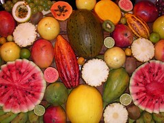 Colors (iko) Tags: 15fav color brasil fruit 510fav bresil screensaver papaya watermelon pineapple citrus grape morrodesaopaulo maracuja starfruit interestingness6 i500