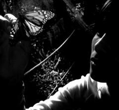 ...al santuari de les monarca (Ista) Tags: portrait woman face 510fav butterfly mexico lafotodelasemana mujer retrato cara womenonly mariposa michoacan lili mexic dona retrat elrosario miradas papallona monarca blogoffame lfscontraluces mrdreflejos