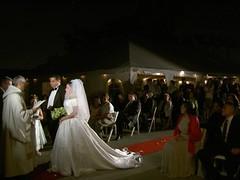 Aldo's Wedding
