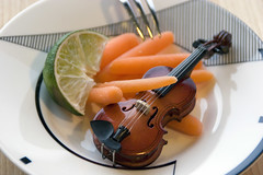 Variations on a $2.00 violin (Robin Dude) Tags: washington absurd nuts violin bellingham artdeco plates carrots forks limes violins bonkers mikasa dessicated absurdities variationsonatwodollarviolin