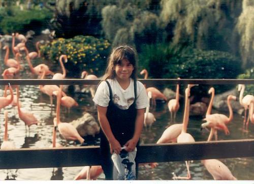 mia flamingo