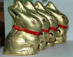 Easter Bunnies (Steve Sawyer) Tags: deleteme5 deleteme8 deleteme deleteme2 deleteme3 deleteme4 bunnies deleteme6 deleteme9 deleteme7 easter deleteme10 chocolate eaten