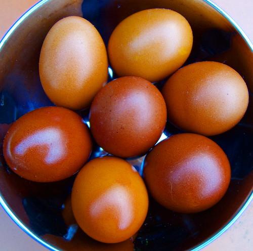 eggs belly fat