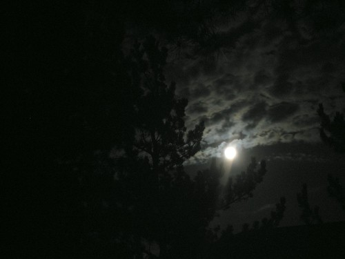 mercedes c230 coupe kompressor_23. moonlight night sky.