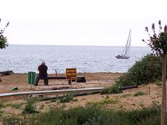 Sit and Shoot 21 (LuPan59) Tags: kodak dx7590 lupan carcavelos