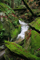 Waterfall I (gsgeorge) Tags: california nature waterfall highwayone moss bigsur highway1 pacificocean pacificcoast centralcalifornia geoffgeorge gsgeorge geoffreygeorge gsgfilms gsgfilmscom