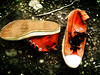 (wakalani) Tags: found olympus forgotten converse vistas allstar zapatillas encontrado olvidado wakalani mirandoalsuelo masvistas utatafeature 2on2mayhalloffame 2on2halloffame
