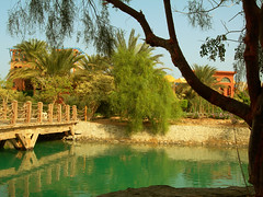 Sheraton Miramar Resort El Gouna, Hurghada - Egypt (mnadi) Tags: flowers sunset summer sky orange holiday flower colour garden hotel warm colours outdoor redsea curves egypt sunny el resort arabic clear gouna egyptian styles sheraton ethnic spa miramar hurghada michaelgraves bedouin  nubian elgouna