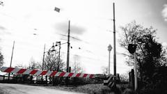 Rails 2 (pierofix) Tags: red bw train rails 169 rosso treno udine rotaie