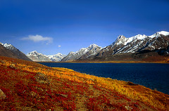 Karambar Lake (meansmuchtome) Tags: flowers blue pakistan sky cloud mountain lake snow mountains love nature beautiful yellow scenery quality glacier chitral hindukush karambar ishkoman