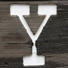 letter Y (Leo Reynolds) Tags: california usa holiday canon eos 350d y iso400 yosemite letter f71 oneletter yyy 53mm 0ev 0006sec hpexif groupiao grouponeletter letterwhite titanhitour titanhitour2006 xsquarex xratio11x xleol30x